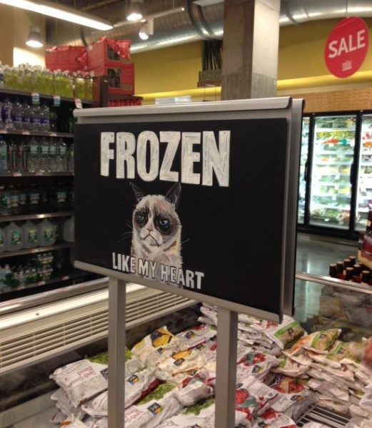 grumpy-cat-frozen-like-my-heart