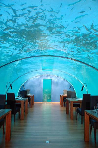 underwater_4.jpg