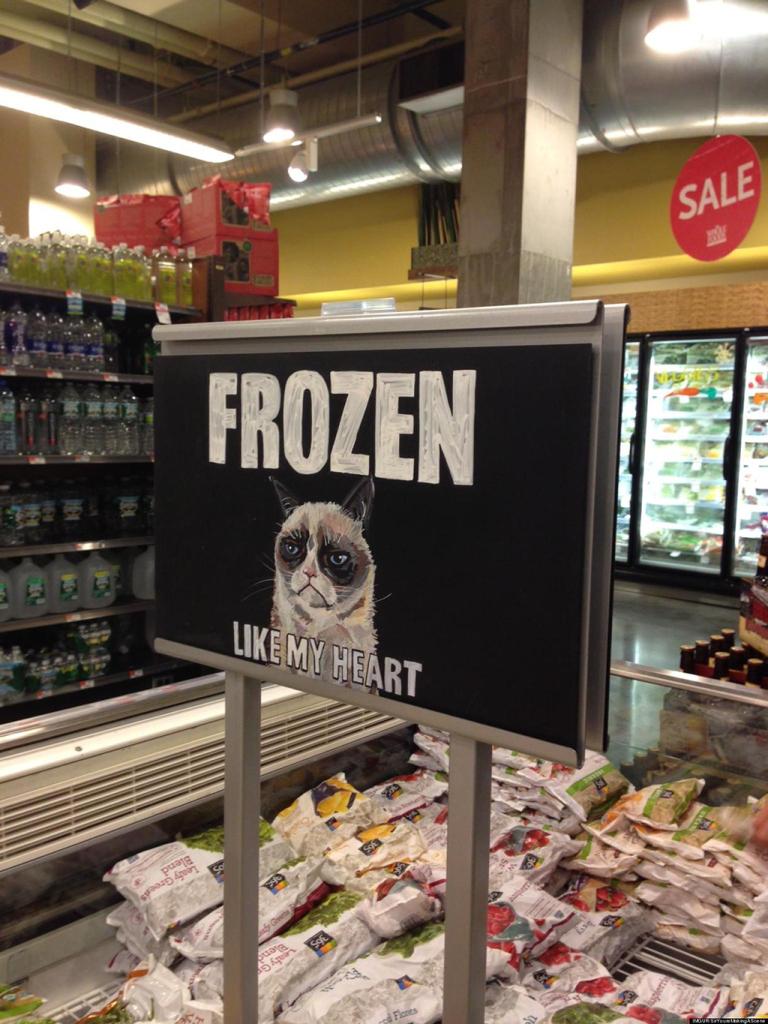 grumpy-cat-frozen-like-my-heart-1