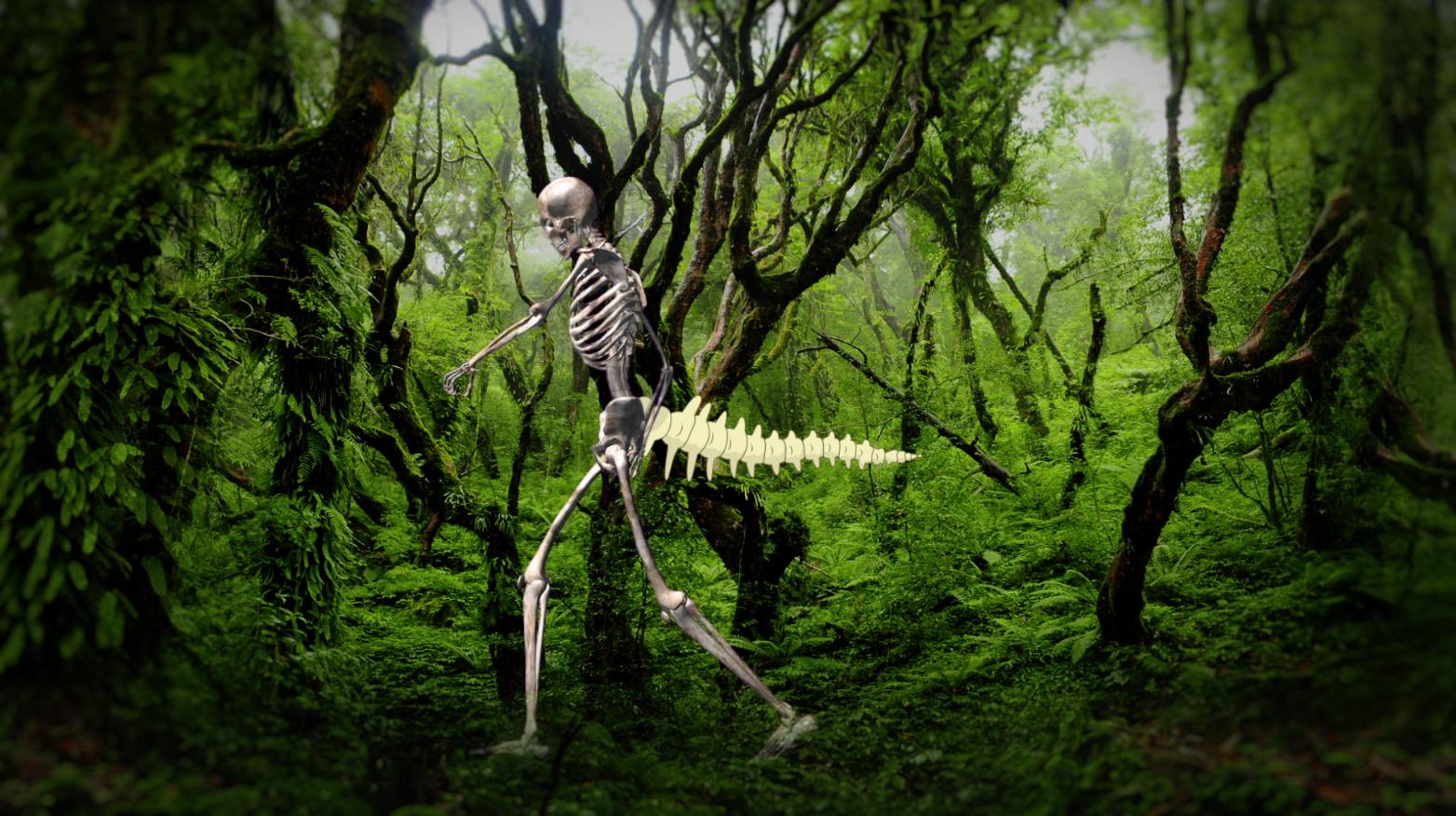 фото скелетов календарь результате появится долговечная